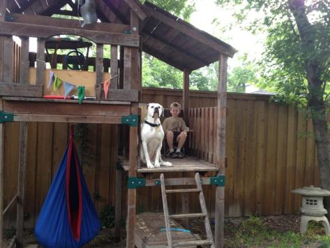 Tiny and his boy Donovan are fans of DAS and rescue partner DFW Rescue Me. (photo: Michele Sabin, Michele's Marshmallows)