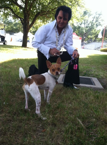 Elvis (Kraig Parker) with Roscoe; www.thekinglives.com